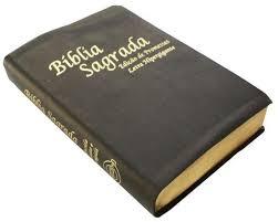 comprar Conheça Sua Bíblia de Capa a Capa