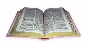 conhecendo Sua Bíblia de Capa a Capa